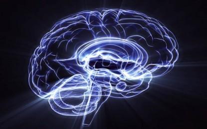 ¿Qué tipos de videojuegos mejoran la función del cerebro?