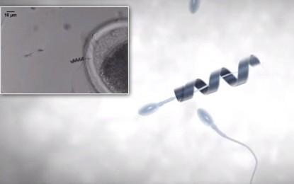SPERMBOT – una nueva solución para la infertilidad