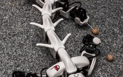 Nuevo Robot Salamandra