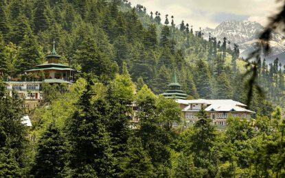 India planea gastar 6 billones de dólares creando nuevos bosques